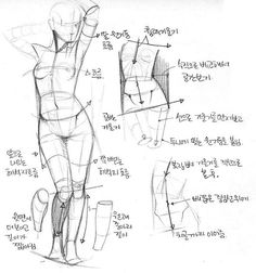 Dunno what it says but seems helpful xD Drawing Female Body, Human Drawing, Drawing Practice, Drawing Skills, Drawing Poses, Drawing Techniques, Life Drawing, Drawing Tips, Figure Drawing