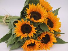 sunflower terracotta cut flowers - Google Search