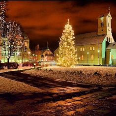 Lighting of the Oslo Christmas Tree will happen in Austurvöllur square, in downtown Reykjavik on the first Sunday of advent. This year's tree has been elected by the mayor as the right tree 10 years ago.