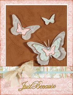 More Butterflies!