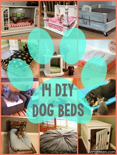 Dogs truly are a man's best friend, so why not make them feel like it? These 14 DIY dog beds are sure to spoil your pet to the next level! Not only are these for your doggie best friends, but...
