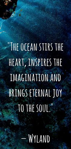 Here is a collection of ocean quotes and scuba diving quotes from famous sea-lovers in history!
