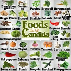 Foods that Kill Candida. I would add coconut water kefir and cultured vegetables. They have worked the BEST for me!