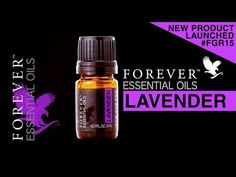 ▶ Forever Living Essential Oils - Lavender was Launched at Forever Global Rally 2015 at Singapore - YouTube