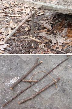 Paiute Deadfall survival trap