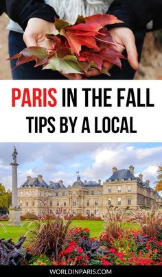 What to do in Paris in the fall, with the best tips by a local to make the most of fall in Paris #paris #fall #autumn #france Paris Travel Guide, Europe Travel Tips, Travel Goals, European Travel, Travel Guides, Travel Destinations, Cool Places To Visit, Places To Travel, France Attractions