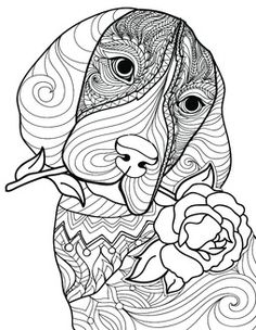 Me time = BH&G time! Better Homes & Gardens is all about all about celebrating creativity—whatever form it takes—and our collection of exclusive coloring designs let's you express yours. From popular pets to eye-catching botanicals and creative quotes, you're sure to find a design you'll love. So gr