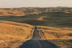Nebraska Sandhills.   Why would we destroy something so beautiful.    http://www.change.org/petitions/urge-the-senate-to-stop-the-risky-keystone-xl-pipeline