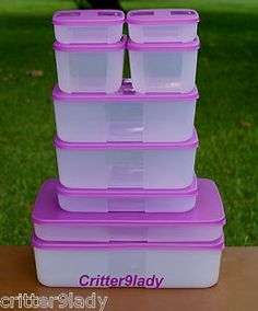 Tupperware Freezer Mates Purple