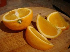 Orange Sliced - WetCanvas | Reference Image Library