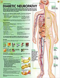 Diabetic Neuropathy chart This pin brought to you by Dr. Robert Odell http://robertodellmdphd.com/
