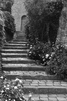 Steps worthy of a fairytale