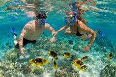 Kona Snorkel Gear Rentals | Kahalu'u Bay Surf & Sea