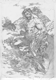 Wolverine by Ed Benes