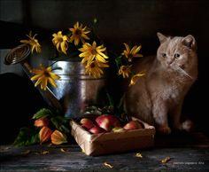 35PHOTO - Eleonora Grigorjeva - Вы говорите - скоро осень?