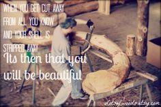 I love logs #logs, #love, #inspiration