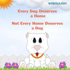 Every Dog Deserves  a Home   Not Every Home Deserves a Dog