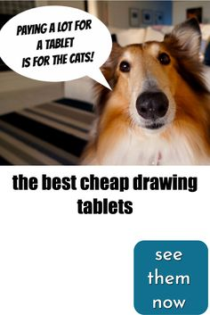 Top 10 best cheap drawing tablets for Tablets for Artists picks cheap graphics tablets, budget tablet monitors, and affordable Drawing Tablet Reviews, Art Tablet, Good And Cheap, Illustration, That Look, Good Things, Digital, News, Drawings