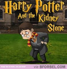 The Health Series Of Harry Potter…