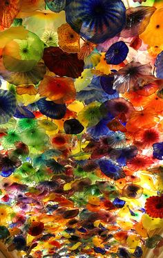 Google Image Result for http://farm1.static.flickr.com/95/428896231_f0e7dc349b.jpg