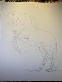 Pop-Up Art Lesson with Tony O'Connor 2/6: I sketched it out to scale. Its on a 100cmx120cm linen canvas primed with white gesso, and sketched on with a simple hb pencil. Think i'll keep the background lightish on this one and buckskin you say?? I shall try whitetreestudio.ie