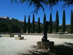 Rodin Sculpture Garden in Stanford, CA. #PlacesToGo