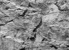 Photo about Rough dark gray rock wall, natural stone surface background texture. Image of rock, closeup, stone - 56719660 Grey Wallpaper, Textured Wallpaper, Textured Background, Faux Rock, Natural Stone Wall, Stone Interior, Gray Rock, Old Rock, Terrarium