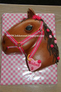 lekker zoet: lief paard voor Babet 9 jaar geworden!