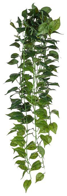 Artikeldetails: Täuschend echter Philodendron-Hänger, Bestehend aus 12 Ranken, Neue Oberfläche, wie echte Pflanzen, Höhe: 120 cm, Material/Qualität: Kunststoff, ...
