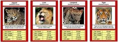 Free # # # # # - Best Education World Printable Animals, Free Printable Cards, Free Printables, Rainforest Animals, Jungle Animals, Jaguar, Create An Animal, Leo, Education World