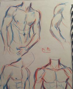 Body Reference Drawing, Drawing Reference Poses, Drawing Poses, Anatomy Drawing, Anatomy Art, Anatomy Sketches, Body Drawing Tutorial, Art Drawings Sketches Simple, Art Poses