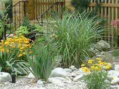 Flowers Rock Garden Designs
