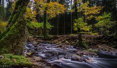 Photo Autumn Evening in Grünklosterberg by David Jonck on 500px
