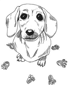 Dachshund Printable Coloring Pages