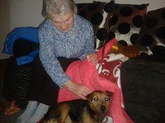 Bosco with his granny Frances