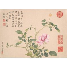 Qian Weicheng: A Dusty Pink Rose - The Met Store