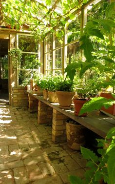 Image result for beautiful greenhouse