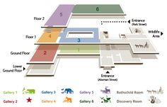 museum floor plan design - Google Search