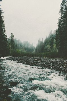 Northwest Flow by Bronson Snelling