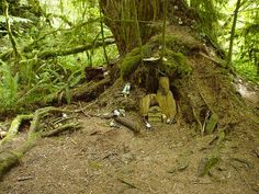 gnome village by comfypants, via Flickr