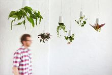 Sky planters.  Lovely way to display plants. <3    boskke.com