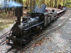 Visiting Logging Locomotives from Mill Creek Central Railroad