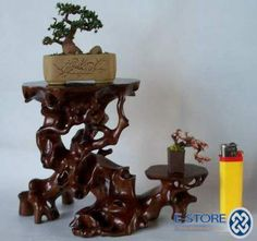 bonsai stands outdoor - Google Search