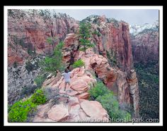 angels landing at zion national park. try not to fall (it's a 1000 foot drop)!