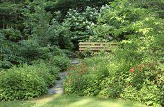 Ecological gardening: Bringing balance to your back yard -- pinkroot