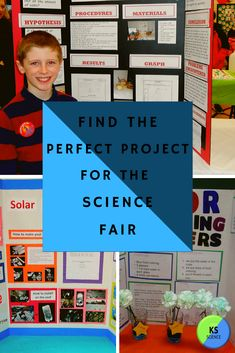 Find the perfect winning project with these simple and creative ideas. They can easily be turned into a unique experime Winning Science Fair Projects, Science Fair Experiments, Science Projects, Projects For Kids, Science Activities, Project Ideas, Middle School Science, Science For Kids, Learn Science