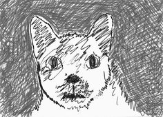 Cat Sketch, Sketches, Illustrations, Cats, Drawings, Gatos, Cat Doodle, Kitty Cats, Illustration