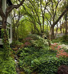 Arlington resident Sandra Brown 's lush gardens. Photo by Dan Piassick Nature, She Wrote. Beautiful Flowers Garden, Beautiful Gardens, Lush Garden, Home And Garden, Sandra Brown, Summer Scenes, Vase Arrangements, Landscape, Nature