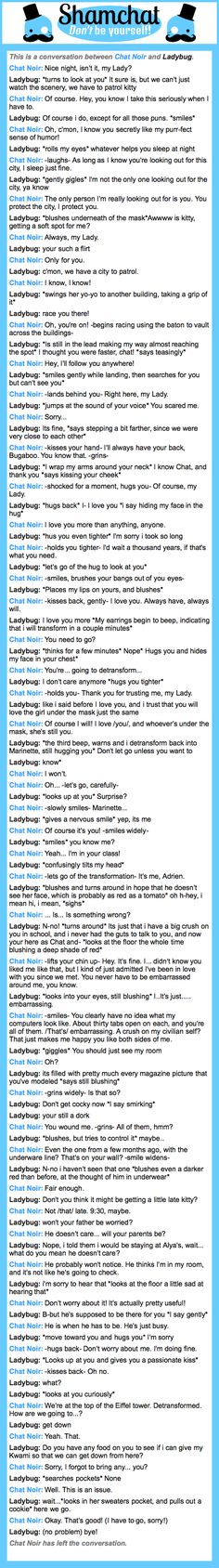 A conversation between Ladybug and Chat Noir