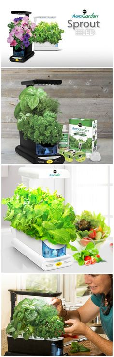 Garden year-round. Grow fresh herbs, vegetables, salad greens, flowers and more in this smart countertop garden. #affiliate